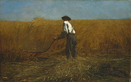 Homer - The Veteran in a New Field